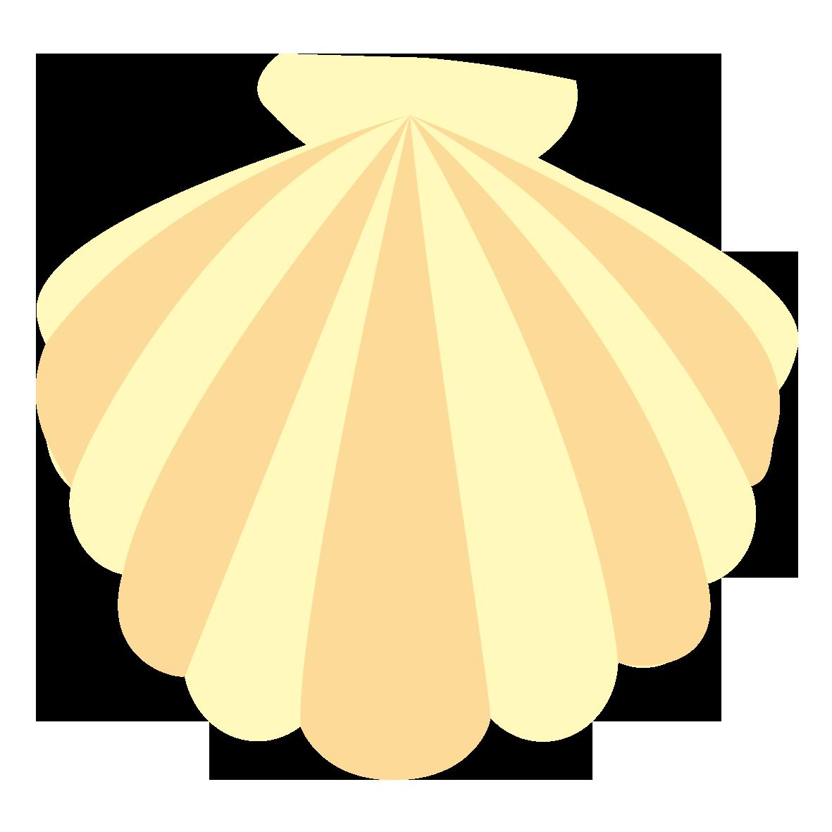貝殻のイラスト一覧 無料イラスト愛