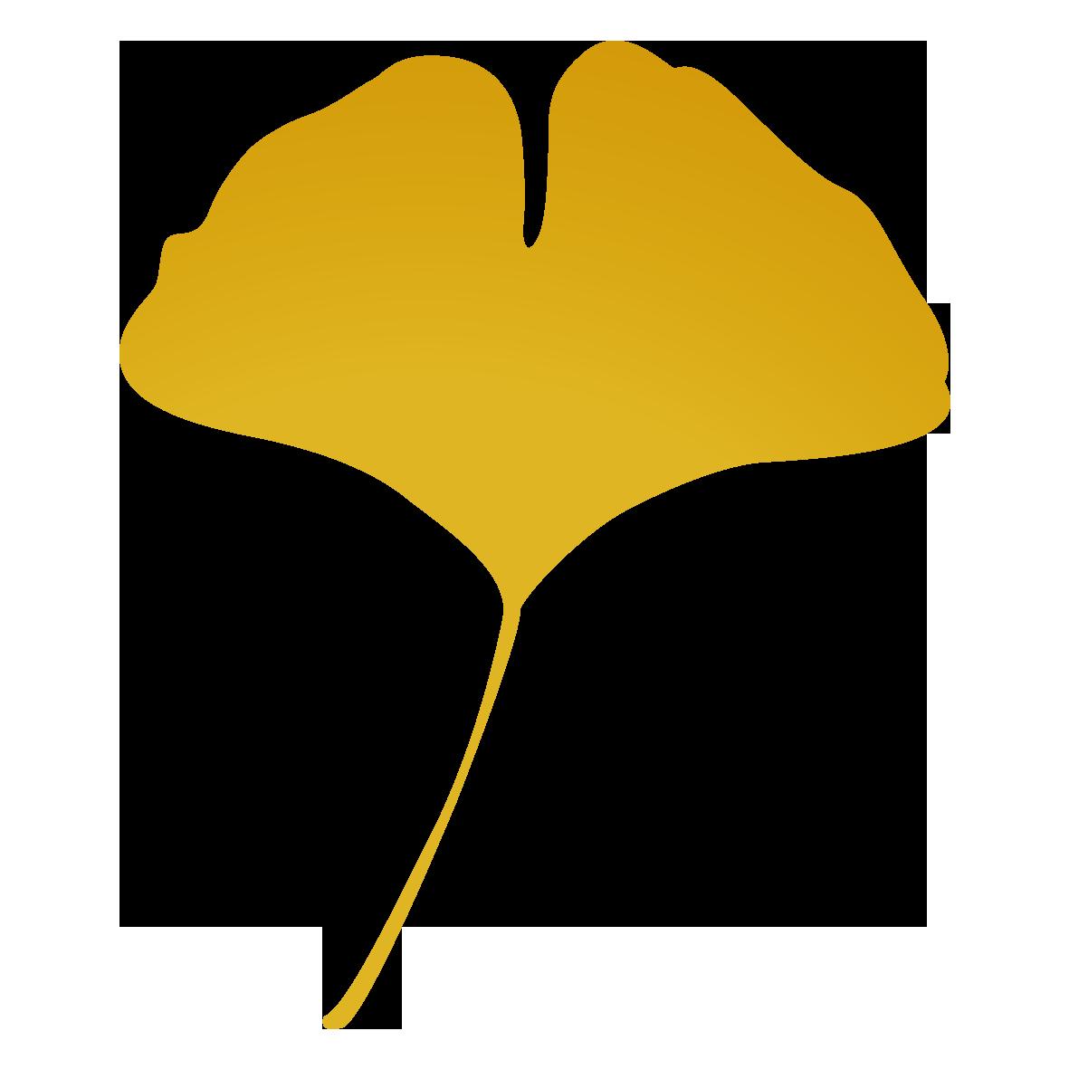 イチョウの葉2 無料イラスト愛