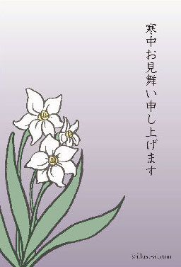 冬の花スイセン